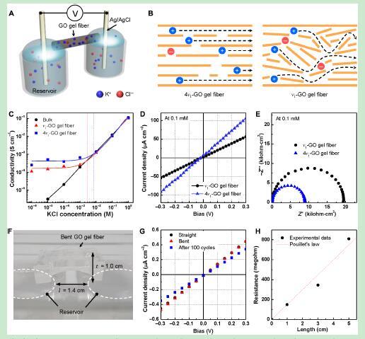 Science Advances: 用于离子传输的液晶-氧化石墨烯凝胶纤维的动态组装
