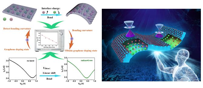 电化学测量方法贾铮_西安交大科研人员提出机械弯曲铁电薄膜调控石墨烯掺杂的方法 ...