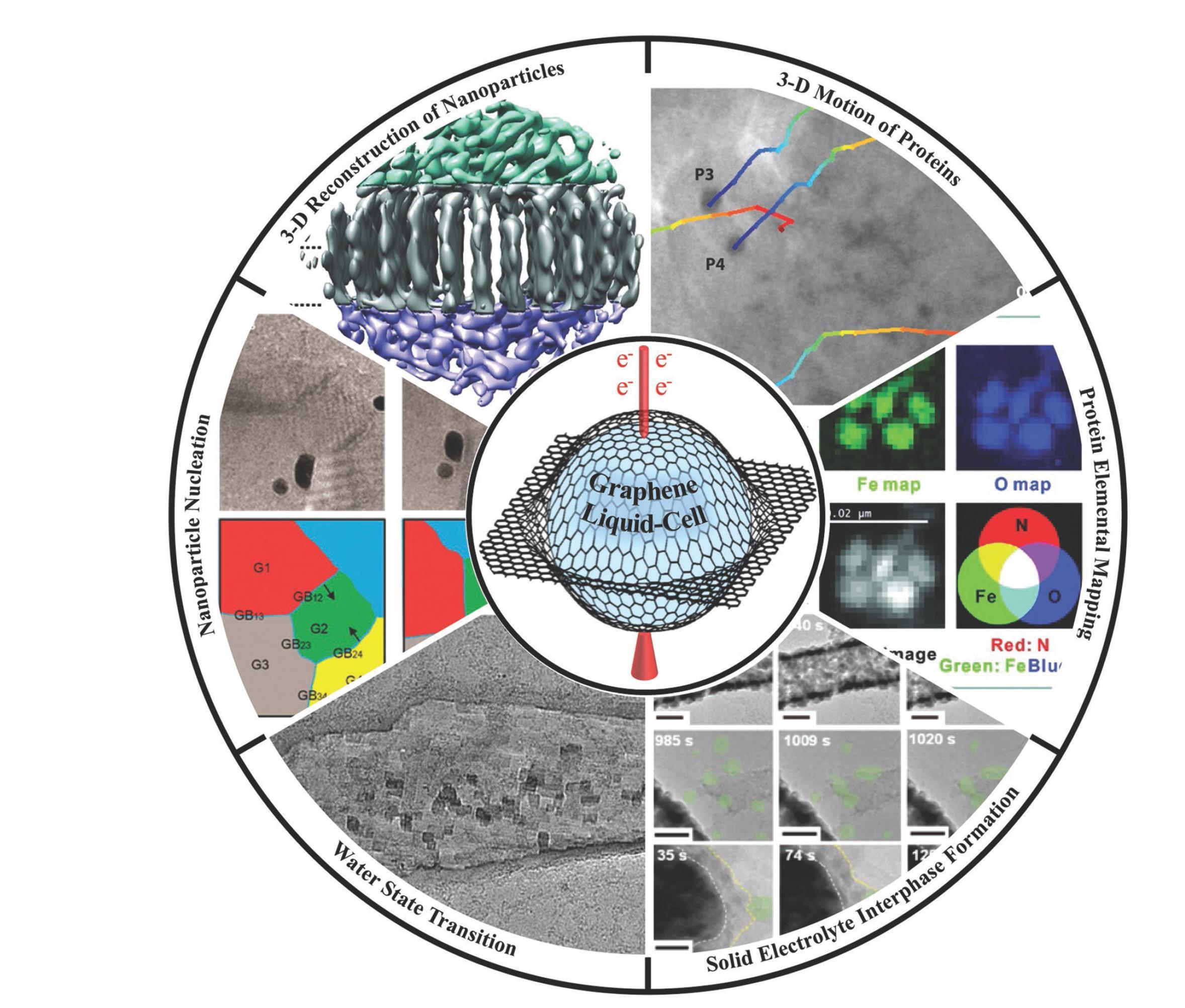 Small Methods:石墨烯液体池电子显微学研究进展:工作原理、机遇与挑战