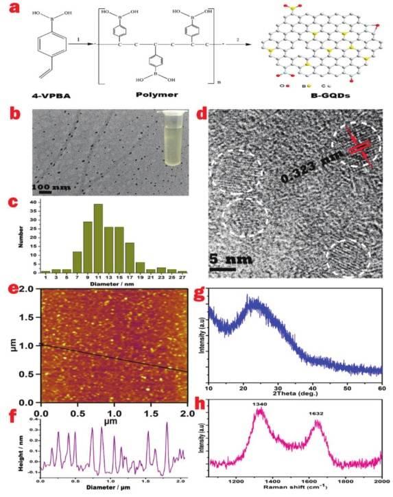 华南师范大学邓小元教授团队:硼掺杂石墨烯量子点的二次谐波效应应用于干细胞成像和伤口愈合超精确跟踪