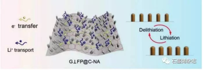 东北师范大学Xing-Long Wu课题组--在石墨烯纳米片上垂直生长的FeP@C纳米阵列
