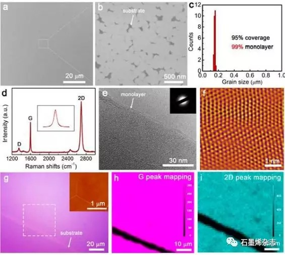 清华大学徐志平课题组--电介质衬底上均匀石墨烯单分子层的初级成核主导化学气相沉积生长