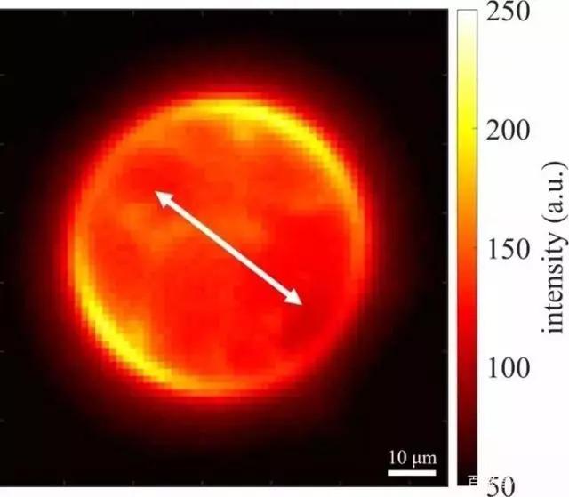 石墨烯层,让超分辨率显微镜成为可能!10亿分之一米也不在话下