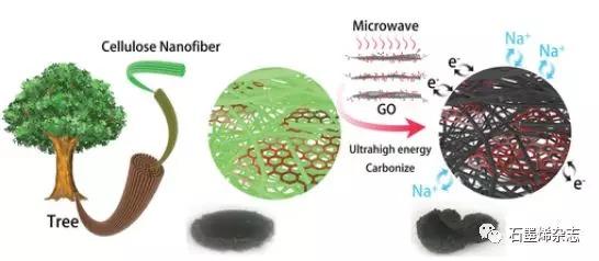 同济大学Jia Huang课题组--通过石墨烯引发剂快速微波碳化天然纤维素纳米纤维制备高性能钠离子电池阳极
